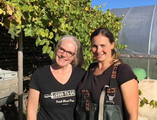 Farm-to-Table, The Heart of Our Business